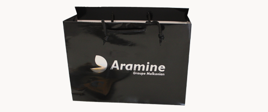 Aramine Black bag featured