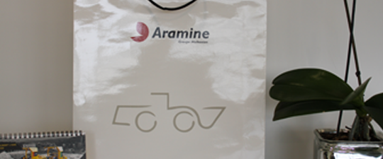 Aramine white bag featured